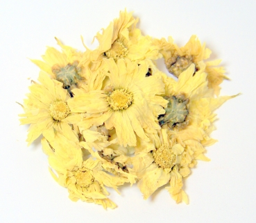 China Chrysanthemenblüten 50g